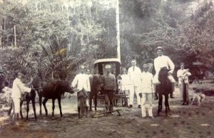 Jan and Drethe Kuneman on the rubber plantation in 1930. Jan is on the horse, and Drethe is holding baby Henriette.