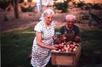 Jacoba and Johannes, 1963
