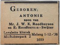 Anton's birth announcement in the local paper in Malang.